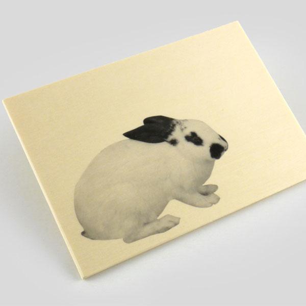 Wood-postcard-charity-wordpress theme